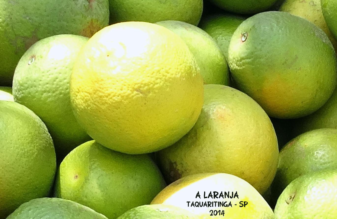 laranja007